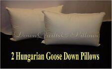 2 X KING SIZE PILLOWS- 95% HUNGARIAN GOOSE DOWN - 100% COTTON CASING
