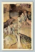 Prairie Dogs, Vintage, Crystal Cave Pennsylvania Postcard