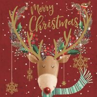 Pack of 6 Merry Christmas Charity Christmas Cards Supporting Multiple Charities
