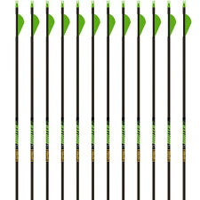 "NEW 2017 Gold Tip Arrows Hunter XT 340 1 Dozen 2"" Raptor Vanes Carbon Hunting"