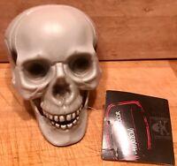 HUMAN SKULL HEAD HALLOWEEN ORNAMENT PROP SKELETON PLASTIC / DECORATE YOUR HOME !