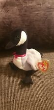 TY Beanie Babies Loosy The Canada Goose - Retired Mint Condition With Tag
