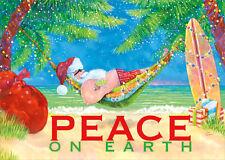 Santa Hammock Peace on Earth Steve Vanderbosch Box of 18 Christmas Cards