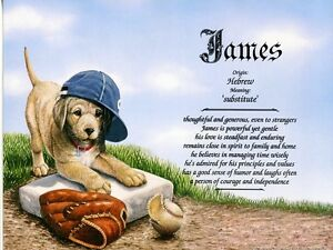 """""""Baseball Puppy"""" Name Meaning Print Personalized (Sports, Dogs, Animals)"""