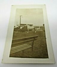Large Horse with Man Postcard RPPC Real Photo 1926-1940s AZO