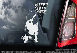 English Border Collie - Car Window Sticker - Scottish Sheep Dog Sheepdog - TYP1