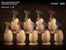 REBOR Set of 9 Dinosaur Collectables 1 6 Scale Velociraptor Hatchlings