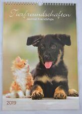 Tierfreundschaften Kalender 2019 Hund Katze Tiere Wandkalender  23,5cm x 34cm