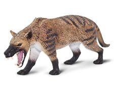 Hyaenodon gigas Prehistoric Mammal Carnivore Hyaena Dog Non Dinosaur Safari