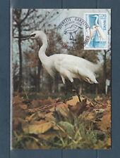 carte  1er jour   oiseau aigrette garzette  01 Villars les Dombes   1975