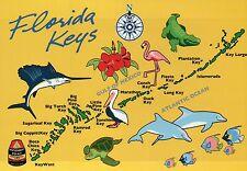 Florida Keys State Map, FL, Key Largo, Key West, Marathon, Fish - 5 x 7 Postcard