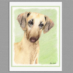 6 Sloughi Dog Blank Art Note Greeting Cards