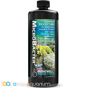Brightwell Aquatics MicroBacter7 1 Liter Bioculture Freshwater & Marine Aquarium