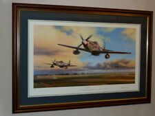 Nicolas Trudgian Duxford Eagles Framed Print & CoA. Low issue number.