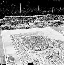 PORTUGAL c. 1960 - Mosaïques Conimbriga - Négatif 6 x 6 - Por 243