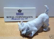 Royal Copenhagen Figurine no.3476 - Cane con ciabatta - Dog with Slipper