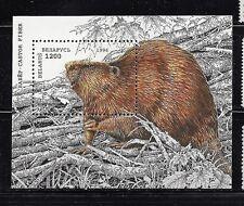 BELARUS. Beaver. Souvenir Sheet 1996 Scott 143 MNH (BI#MKA)