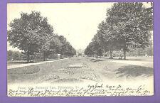 PENNSYLVANIA - PHILADELPHIA, FLOWER BEDS, FAIRMOUNT PARK POSTCARD 1931