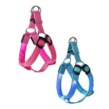 Midwest CBK LED Pet Harness, Choose Your Style (7107650)