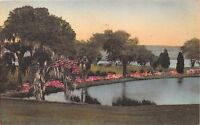 CHARLESTON SCMIDDLETON PLACE GARDENS~ALBERTYPE HAND COLORD LANNEAU'S POSTCARD