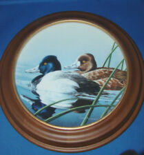 Collector Plate Federal Duck Stamp The Lesser Scaup Neal Anderson with Frame @2B