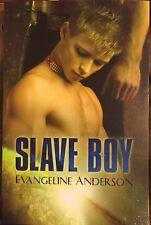 """Slave Boy"" By Evangeline Anderson Gay Romance Yaoi Sci-fi"