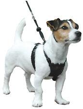 Company OF ANIMALS No-Tire Arnés para perros pequeños cachorro perro formación de tamaño S