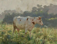 "high quality oil painting handpainted on canvas""cow"""