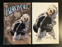Black Cat #1 J Scott Campbell Variant 2 Comic Set Trade Dress/Virgin NM Cover A