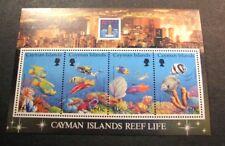 Souvenir Sheets Cayman Islands  Scott#  676 Reef Life  1994   MNH C451