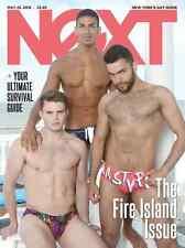 NeXT Magazine Fire Island Issue Tom Bonanti TAGG Swimwear Bathhouse MAY 2016 Gay