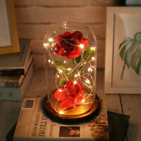 Red Rose Beauty And The Beast Enchanted Flower Glass Dome Valentines Xmas Gift
