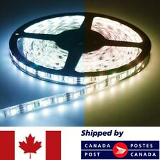 5 Meters 300 LED Light Strip 5050 3528 Flexible SMD 12 Volt Non Waterproof