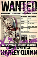 Poster SUICIDE SQUAD - Wanted - Harley Quinn ca60x90cm NEU 58853 ger