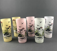 Vtg Pastel Frosted Tall Glasses Victorian Woman Set Of 6