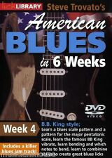 LICK LIBRARY Steve Trovatos AMERICAN BLUES GUITAR in 6 Weeks Learn BB King DVD 4