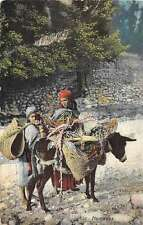 Nomads with Donkey Antique Postcard J54498