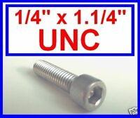 """Stainless Steel UNC Imperial Socket Caps (Allen Bolts) 1/4 x 1.1/4""""   10 Pack"""