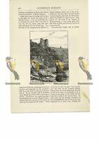 Knaresborough Castle, Yorks, Book Illustration (Print), 1891