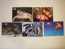 Lot of 5 Different Georgia Aquarium Postcards Atlanta Souvenir Sea Creatures