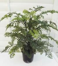 FANTASTIC ARTIFICIAL MAIDEN HAIR PLANT FERN REALISTIC INDOOR HOUSE  POTTED NEW