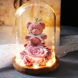 4 Color Teddy Bear eternal rose Glass Dome On Wooden Base For LED Lamps Light