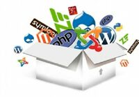 200,000 Real Visitors and SEO Submit Website Web Advertising