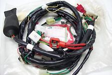 faisceau câbles Original SYM pour la Fancy 50 et : 32100-e48-000