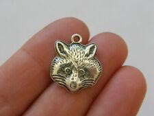 BULK 20 Raccoon charms antique silver tone A1079