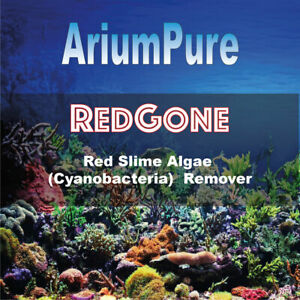 RedGone - Red Slime Algae / Cyano / Cyanobacteria Remover