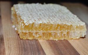 1  x 300g RAW honeycomb by Moonah Dunes Honey