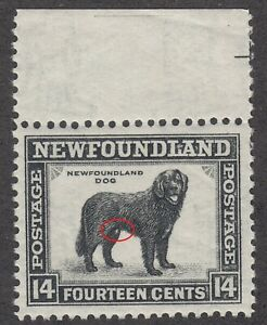 Newfoundland # 261 Mint Never Hinged Very Fine Male Dog Variety