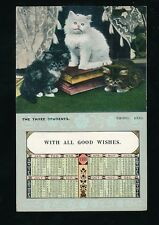 CATS The Three Students 1906 Calendar PPC used 1905