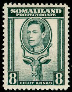 SOMALILAND PROTECTORATE SG99, 8a grey, VLH MINT.